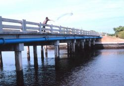 Photo -1b - The waterside view of a fisherman casting his net for mullet and other fish off a bridge south of Everglades City. Photo