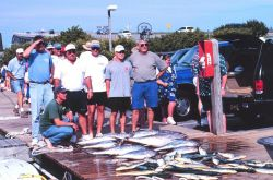 A charter boat unloads a catch of yellowfin tuna and dolphinfish Photo