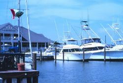 Recreational fishing boats home port at the Sportsplex Marina Photo