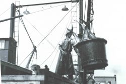 A 500-lb bucket of yellow-fin tuna being swung off a vessel to a receiving trough for further processing Image