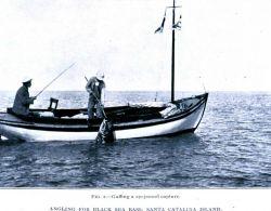Angling for black sea bass at Santa Catalina Island Image