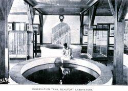 Observation tank, Beaufort Laboratory Photo