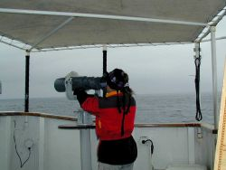 Scanning the horizon with the bigeyes on the NOAA Ship McARTHUR Photo