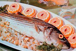 Seafood dinner Photo
