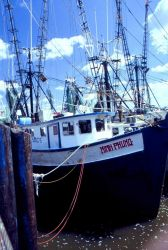 A newly renamed trawler reflects the role of immigration in the development of American fisheries Image