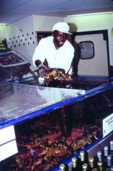 A McLean, Virginia, seafood market employee tends live lobsters from New England Photo