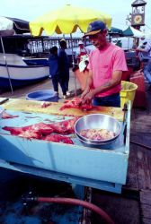 Fish are filleted or sold whole within hours of being hauled up from the relatively deep water off Southern California. Photo