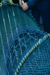 A netmaker puts the finishing touches on a shrimp net equipped with devices to reduce bycatch and exclude sea turtles. Photo
