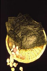 Maine fishermen are investing in algal cultivation to meet the heavy demand for these processed sheets of nori. Photo