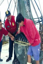 A Pascagoula, Mississippi, shrimper crew helps an enforcement officer verify that their TED meets specifications. Photo