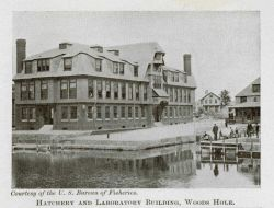 Hatchery and laboratory building at Woods Hole Photo
