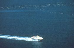 A bird's eye view of a passing hydrofoil and most of the netting complex Photo