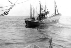 Pole and line fishing boat above a school of tuna Photo
