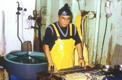 Peruvian scientist sampling blue jack mackerel (Trachurus picturatus). Photo