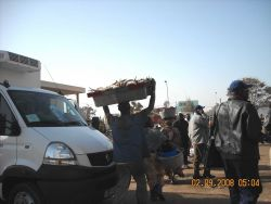 Carrying fish to the market place in Dakar. Photo