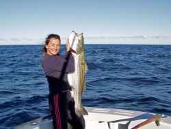 Angela Annino of Connecticut holds up an impressive striped bass, one of New England's most popular sport fish Photo