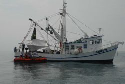 NOAA R/V CARETTA being used for fisheries investigations in the Gulf of Mexico. Photo