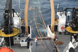 Deploying Aleutian wing trawl on sperm whale predation survey. Photo
