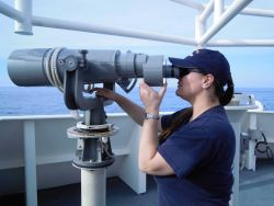 Biologist assuring no dolphin or marine turtles in vicinity of NOAA Ship PISCES while conducting trawl surveys which could entangle such NOAA Ship PIS Photo