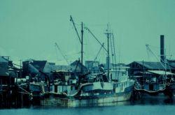 Porgy fishing boat Photo