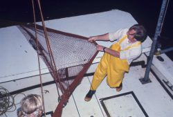 Night trawling on the NMFS research vessel RACHEL CARSON Photo