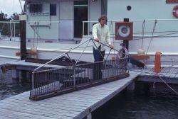 South Florida Offshore Environmental Study - a roller frame trawl Photo