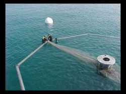 Deployment of an Ocean Spar Sea Station 600 off MS by the Gulf of Mexico Offshore Aquaculture Consortium