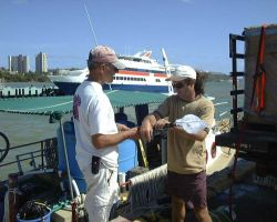 Handnets and gear being loaded in preparation for Florida cultured cobia (Rachycentron candum) stocking in offshore cages in Puerto Rico Photo
