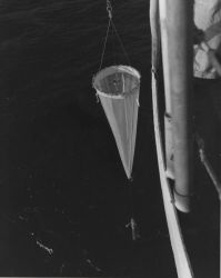 Plankton net being deployed on C&GS Ship PIONEER - probably during 1964 Indian Ocean Expedition. Photo