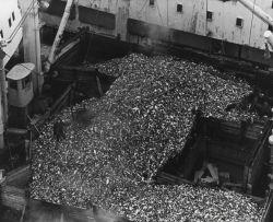 Soviet factory ship receiving area Photo