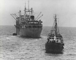 Soviet factory ship preparing to receive catch from small catcher boat. Photo