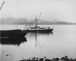 BCF vessel MURRE II Photo