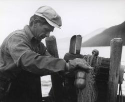 Retrieving gill net used in salmon fishing Photo