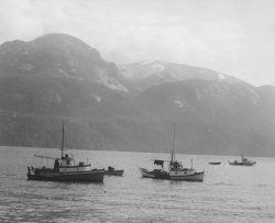 Small salmon boats anchored inshore with vessel underway offshore. Photo