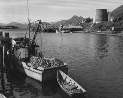 Salmon purse seiner at dock Photo