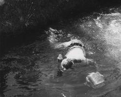 Rex Gary Schmidt taking underwater motion pictures of salmon Photo
