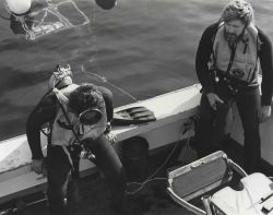 Diver biologist preparing to enter shark cage from sport fishing boat. Photo
