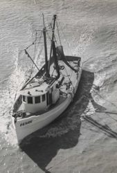 A typical Louisiana offshore trawler of about 60 feet overall length and 16 net tons. Photo