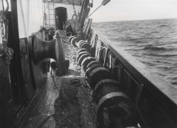 Trawl rollers necessary for rough-bottom trawling Photo