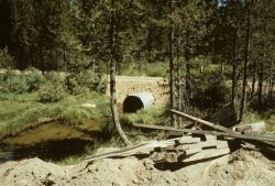 Culvert passing under road on Trout Creek Photo