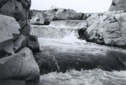 Looking up fish ladder during moderate river stage Photo