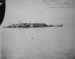 Shad fishery, Osmond & Sons float, Havre de Grace, MD. Photo