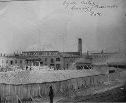 Oyster fishery, cannery of Pearson & Co., Baltimore, MD. Photo