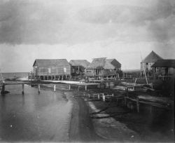 Near the shore Photo