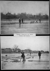 Fishing through ice with tongs and rakes. Photo