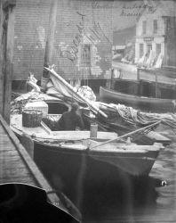Sardine unloading. Photo