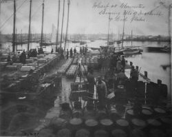 Wharf at Gloucester, MA showing bbls of mackerel and cod flakes. Photo
