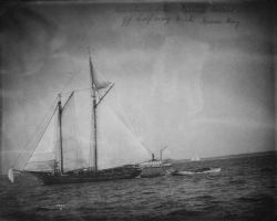 Mackerel Schooner Laura Nelson off Half Way Rock, Massachusetts Bay. Photo