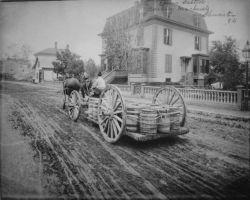 Carting brine salted mackerel, Gloucester, MA, 1882. Photo