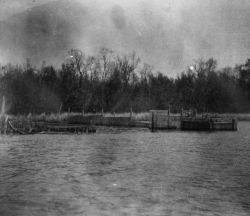 Slat mud-weir in the Roanoke River near Plymouth, NC, used in capture of catfish, yellow perch, etc. Photo